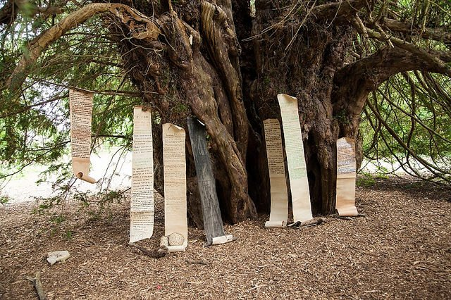 """""""Festival For Democracy's"""" global justice demands pegged on Runnymede Ankerwycke Yew Tree, birthplace of the Magna Carta"""